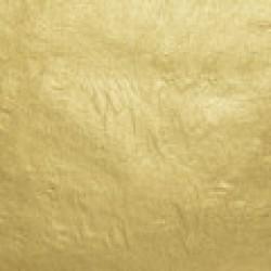 WB 18kt-Lemon-Usual Gold-Leaf Surface-Book