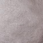 WB-Palladium-Leaf Surface-Pack